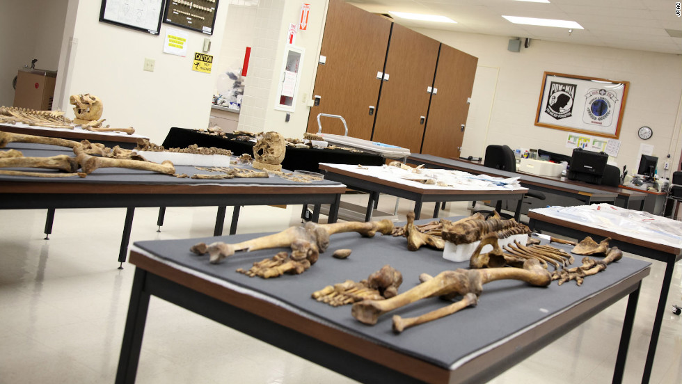 Partial skeletons and bone fragments fill tables at JPAC's home in Hickam Air Force Base which was also the site of the Pearl Harbor attack.