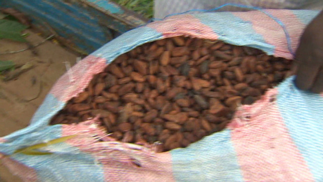 Navigating the cocoa community trade