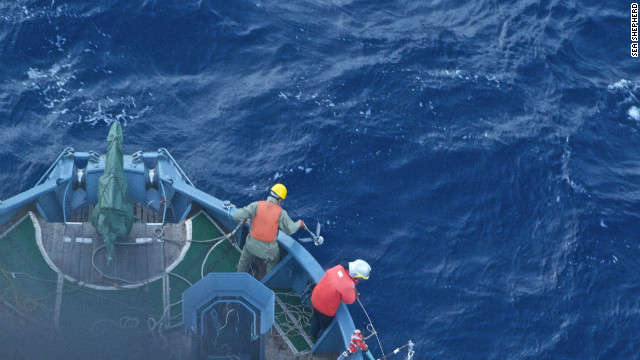 Sea Shepherd crew members say Japanese whalers threw iron grappling hooks at their boats.