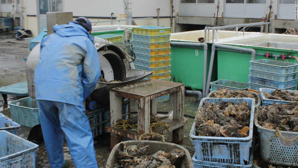 Only one working oyster processing factory is left on the Urato Islands.