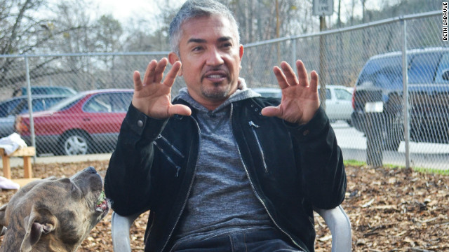 Cesar Millan shares his tips on adoption