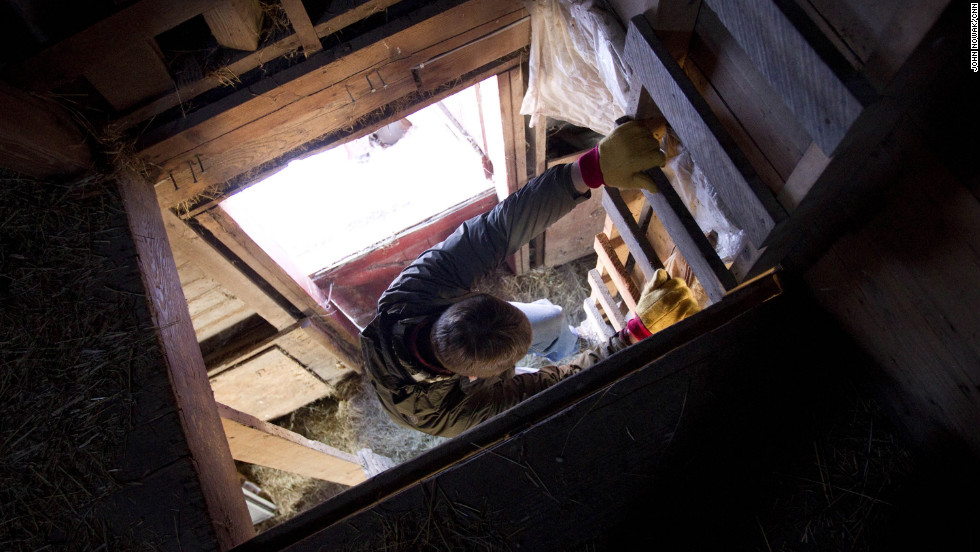 Tofteland climbs down a ladder in a barn on his farm. The barn stands as a vestige of the past. Today's farm is all about efficiency and production.