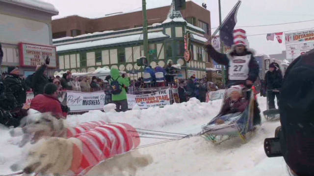 Dog gone! 40th Iditarod race begins