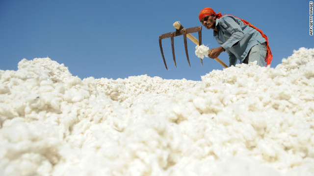 An Indian worker sorts cotton at Patel Cotton Industries, Ginners and Exporters, in Dhrangadhra, India in December 2011.