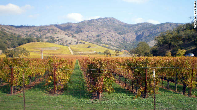 California wine country -- from Santa Barbara to Napa, seen here -- provided a satisfying road trip adventure.