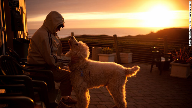 Half Moon Bay in California offers plenty of dog-friendly options, including sunset on the Seal Cove Patio at Moss Beach Distillery.