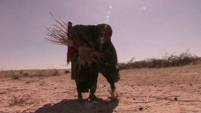 Alarm over deadly food crisis in Africa