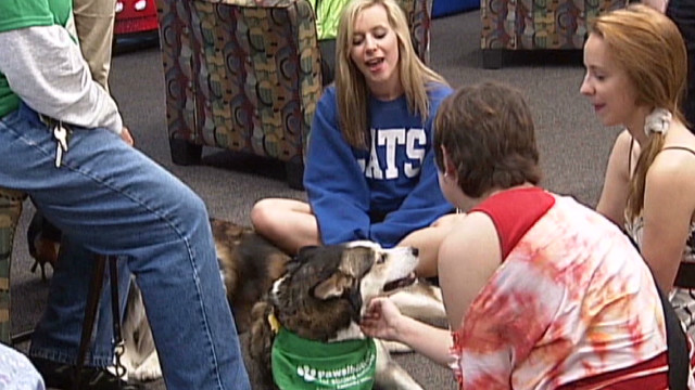 Dogs deliver stress relief for students