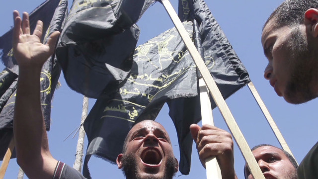 Palestinian hunger strike, protests grow