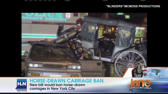 Should horse-drawn carriages be banned?