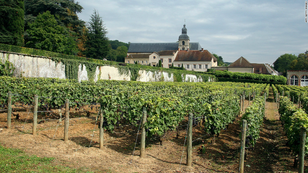 A picture from August 25, 2011 shows a vineyard belonging to the Moet & Chandon champagne house and the Abbey of Hautvillers near the northern French town of Epernay.
