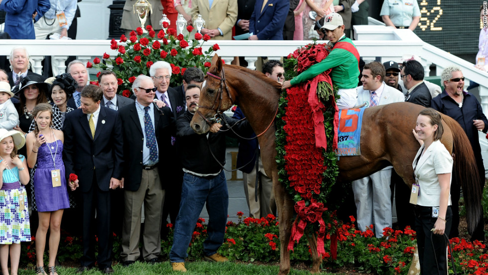 "Last year's champions -- jockey John Valazquez atop  Animal Kingdom -- celebrate winning the  137th Kentucky Derby. The race is known as the ""Run for the Roses,"" after the garland of flowers draped on the winner."