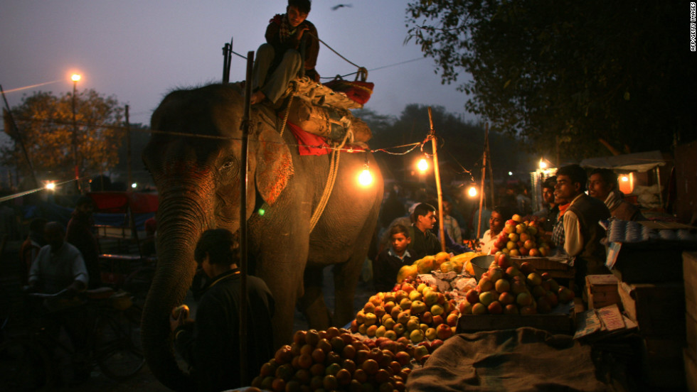 A man feeds an elephant in one of New Delhi's numerous street markets. In New Delhi it's not uncommon for shops to stay open late into the night.