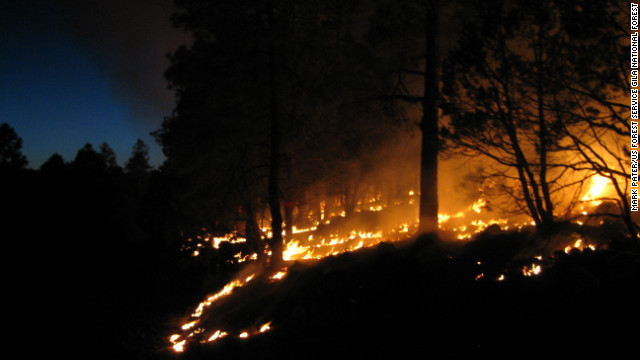 """The U.S. Forest Service performs a """"burnout"""" operation to combat the fire raging in the Gila Wilderness."""