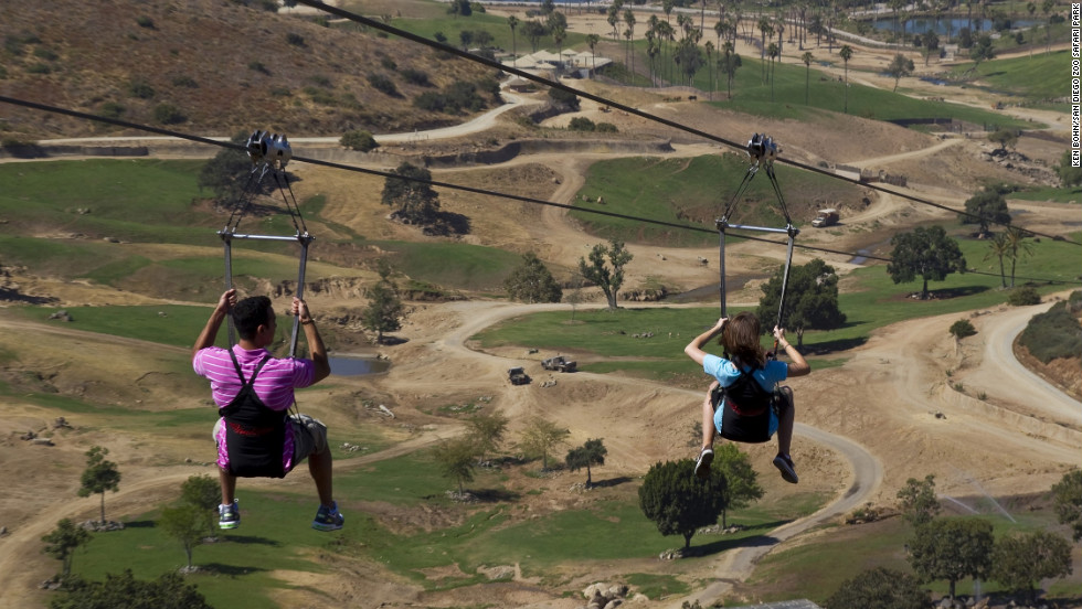 Look out for birds, rhinos and other creatures as you fly high through the Safari Park.