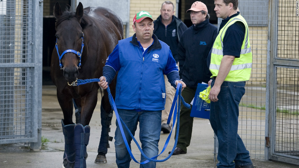 Black Caviar, who is undefeated in 21 races, was the only horse on the plane for her 30-hour journey to England.