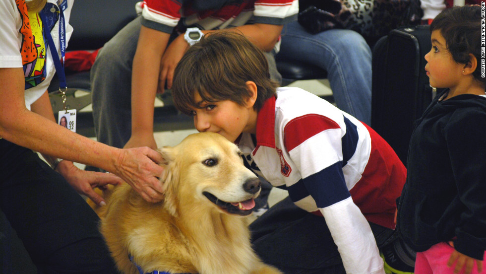 Need some snuggle time? Casey, a 69-pound golden retriever, strolls though Miami International Airport two days a week with owner Liz Miller, an airport volunteer. Liz and Casey help passengers with directions and generally try to smooth the travel experience.