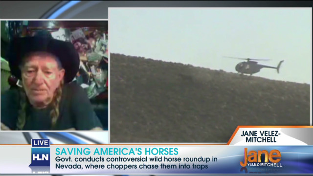 Willie Nelson urges respect for horses