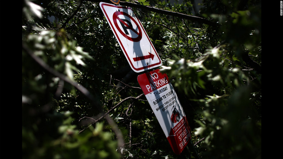 A  No Parking sign is shown in the middle of a fallen tree in Washington's Shaw neighborhood.