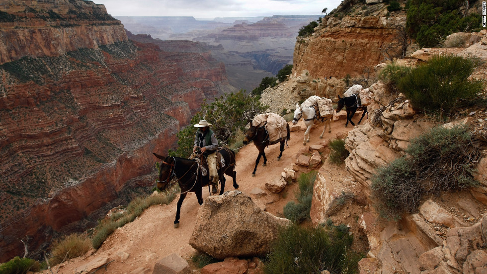 Consider a trip to Grand Canyon an adventure.