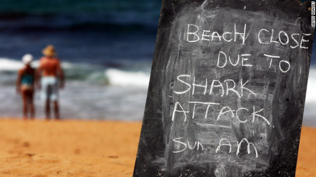 Sydney's Avalon Beach is pictured after a shark attack on a surfer on March 1, 2009.