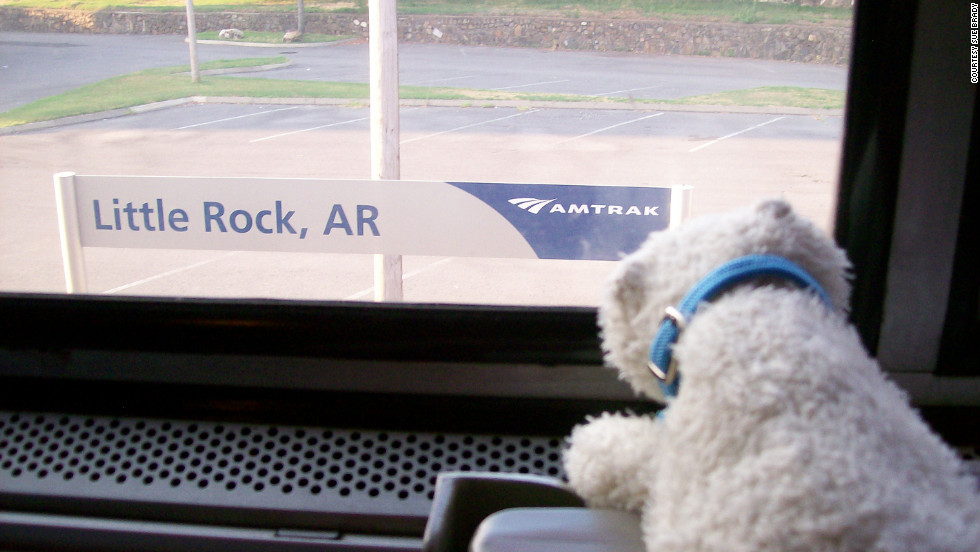 Bear rides Amtrak through Little Rock, Arkansas.