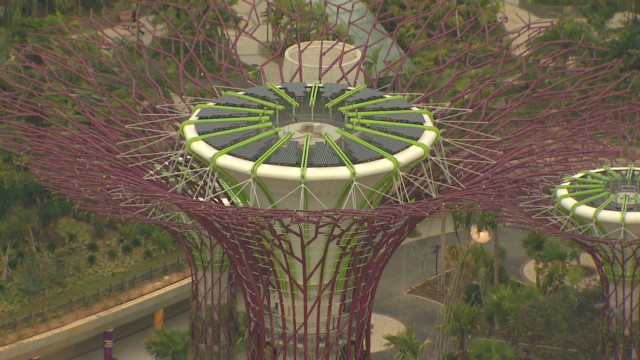 Singapore's solar-powered gardens