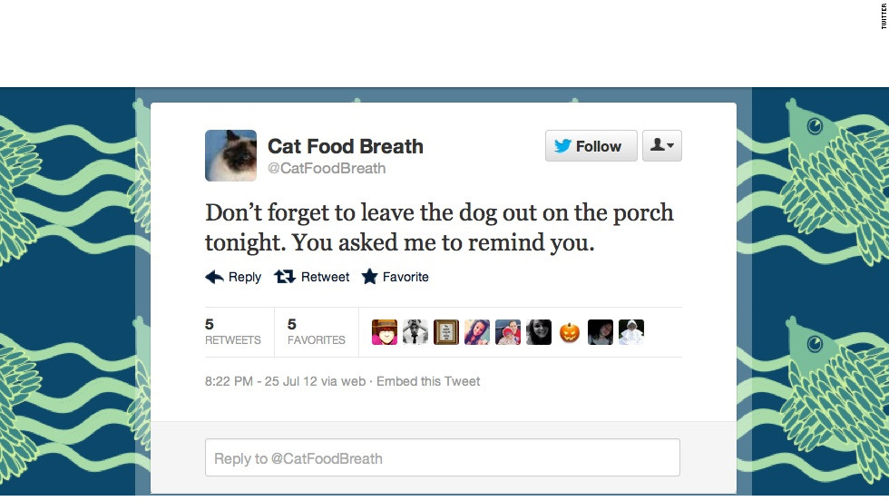 "If you're not <a href=""https://twitter.com/CatFoodBreath"" target=""_blank"">@CatFoodBreath</a>, you should feel bad about it. This (imaginary) snarky feline has a Burlington, Vermont, woman to thank for sharing its sardonic take on dogs, naps and food with the Twitterverse. Followers: 18,742"