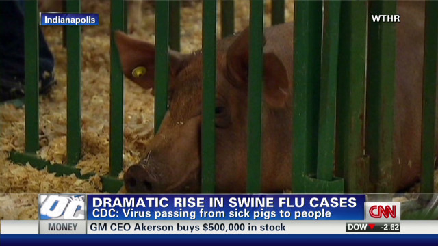 exp Cohen and swine flu cases in pigs_00001123