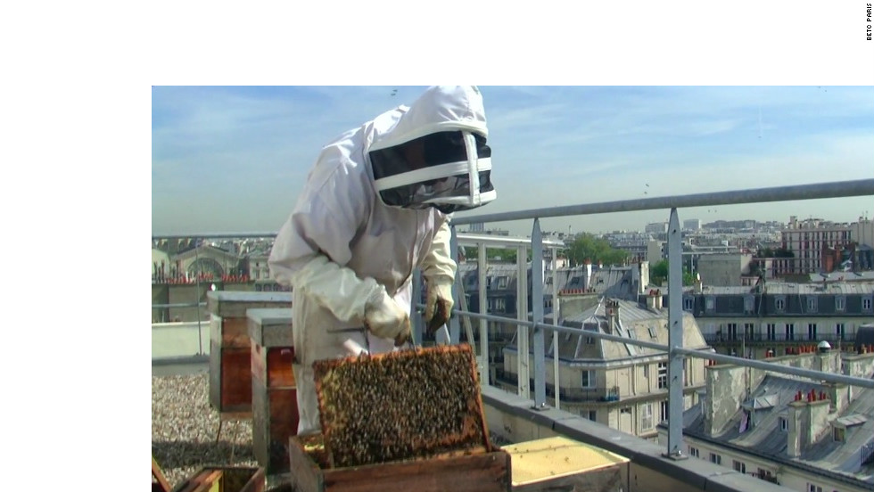 "At Erra's agency BETC, they keep bees on a rooftop terrace. Erra, who has a Masters in Literature from the Sorbonne, says working in advertising is like studying literature. ""It's the chance to understand people, and how to create something which can move people."""