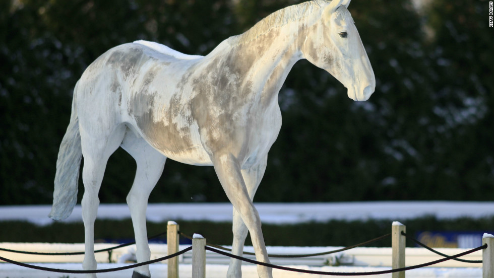 A statue of the legendary national hunt horse Desert Orchid is a feature of Kempton Park, near London, where he achieved many of his greatest triumphs.