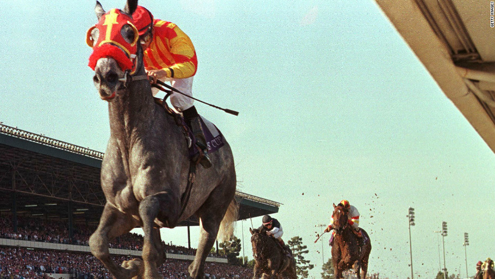 Champion American gray Skip Away won nearly $10 million in prize money and scored a runaway victory in the 1997 Breeders' Cup Classic.