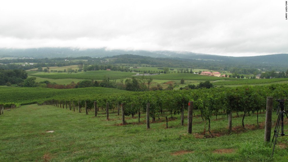The drought of 2012 had a devastating impact on farmers in the United States. But one industry that actually benefits from dry conditions is wine. This is Breaux Vineyards in Loudon County, Virginia.