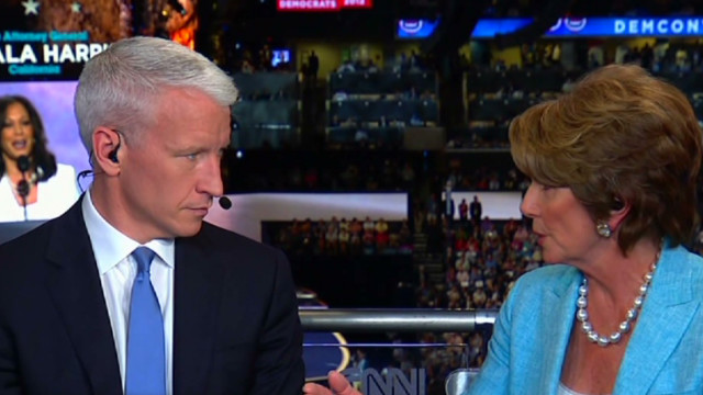 Pelosi: DNC platform debate 'so mild'