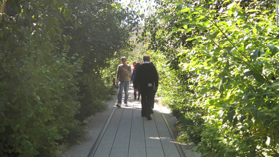 The High Line is supported by Friends of the High Line, founded in 1999, which is dedicated to its development and preservation.