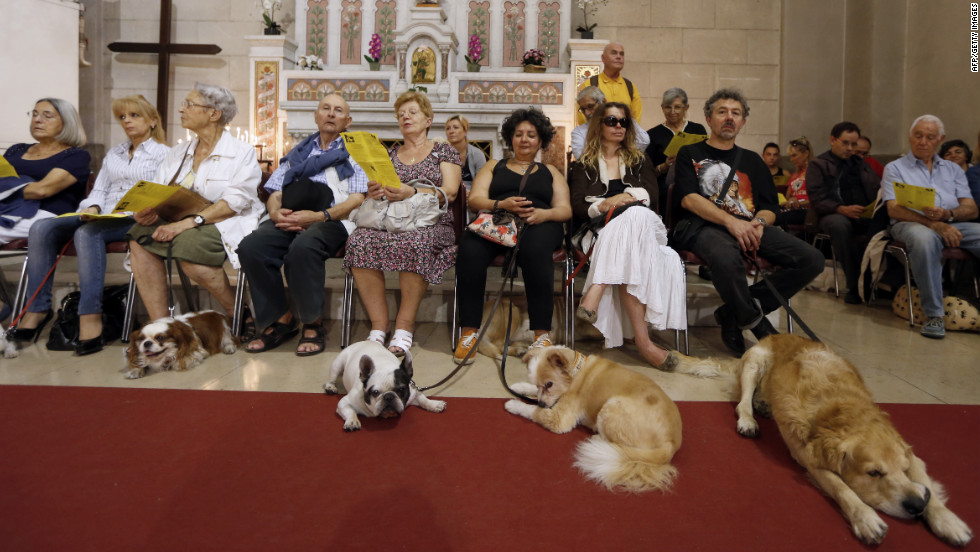 People and animals line up for the blessing on Sunday.