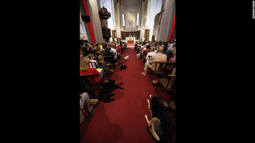 People and their pets sit in the church on Sunday.