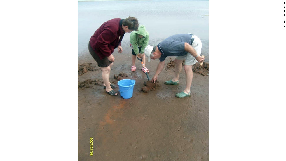 Visitors to Prince Edward Island can dig for clams with a local guide and feast on their work for dinner.
