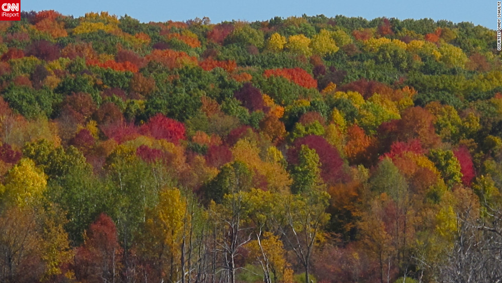 "The forest canopy of <a href=""http://ireport.cnn.com/docs/DOC-852131"">Kettle Moraine, Wisconsin</a>, features daubs of nearly every fall color."