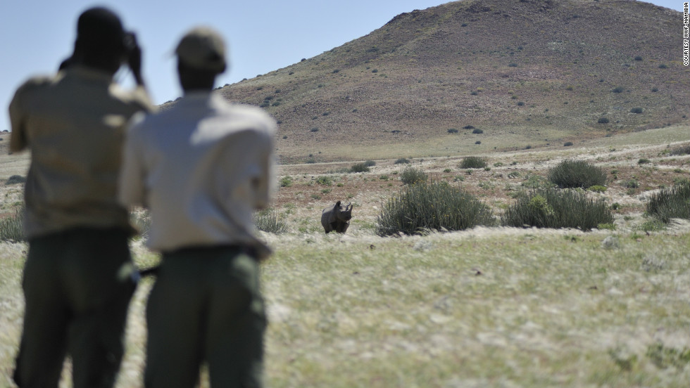 Much of Namibia's wildlife on communal land was critically endangered until the 1980s, but a radical rethink to make poachers 'game guards' reversed the fortunes of many community members and has led to a steady increase in animal numbers.