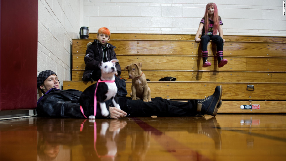 Dover, Delaware, evacuee Thomas Kraidy (left) plays with his puppies Kelo and King  as relatives Deztin Lankford and Cherokee Lankford look on. They found shelter at pet-friendly Milford Middle School gymnasium in Milford, Delaware.