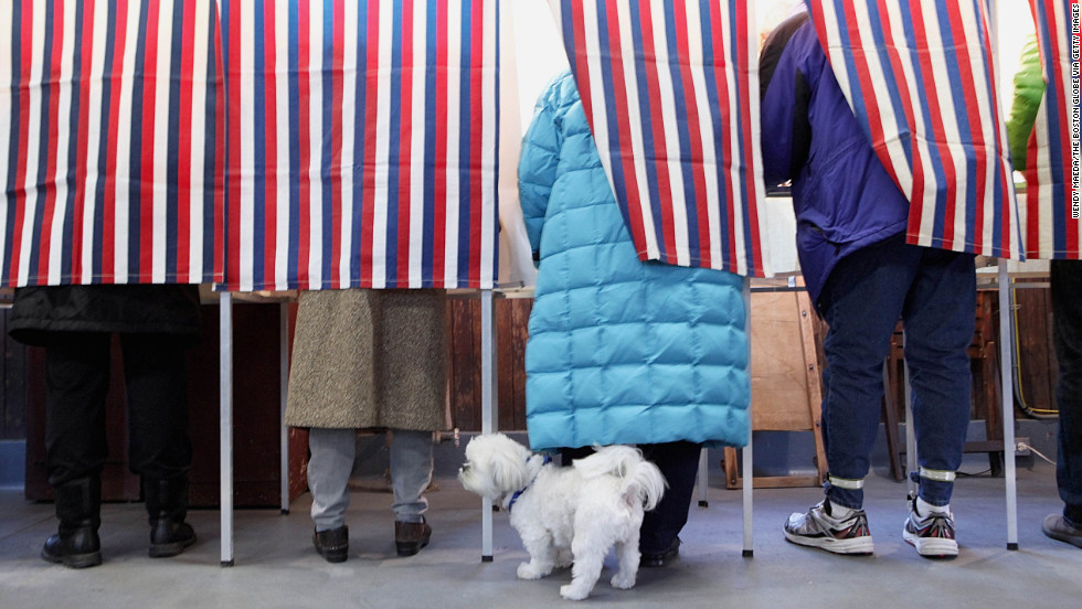 The clever Bowzer the Mystery Dog gathers data as voters perform their civic duty.