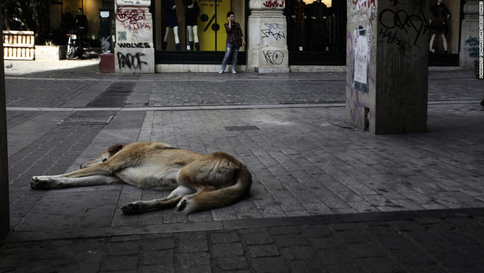 A dog sleeps in a deserted commercial street in central Athens on November 7, 2012 during a 48-hour general strike.
