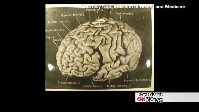 CNN Student News - 11/30/12