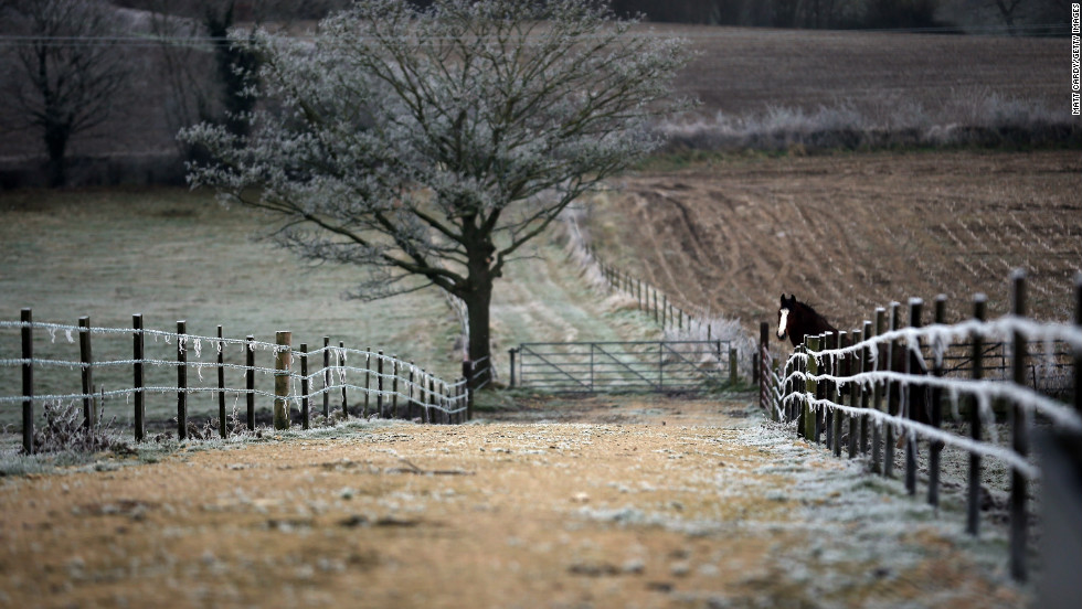 A horse looks out from a frozen field on December 12 in Somerset, England.