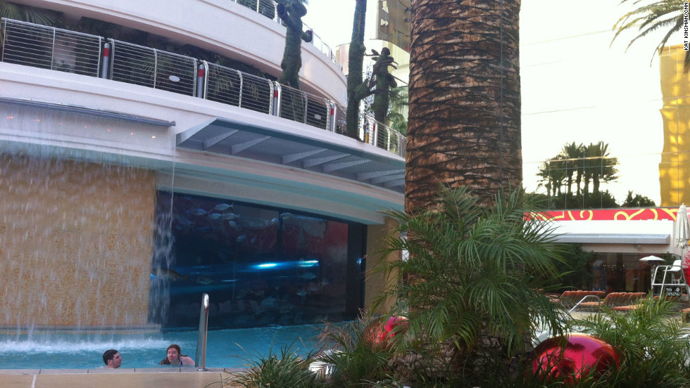 Pool and shark tank at The Golden Nugget