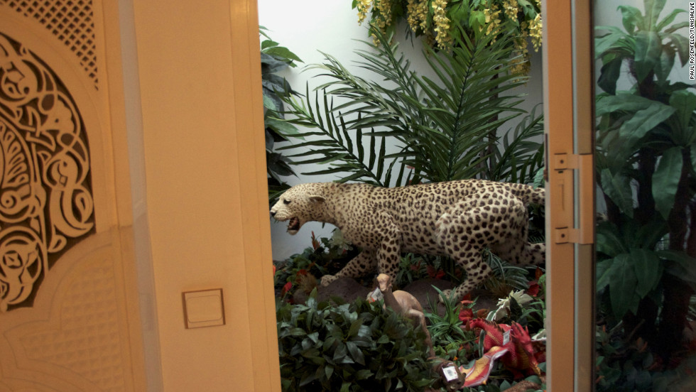A stuffed jaguar is set amid foliage inside the house next to a toy dinosaur and dragon. Exotic cats were a feature of the Ben Ali family homes -- in a diplomatic cable published by Wikileaks, a former U.S. ambassador recounted a dinner at the seafront home of Ben Ali's daughter, Nesrine, where she kept a caged pet tiger.