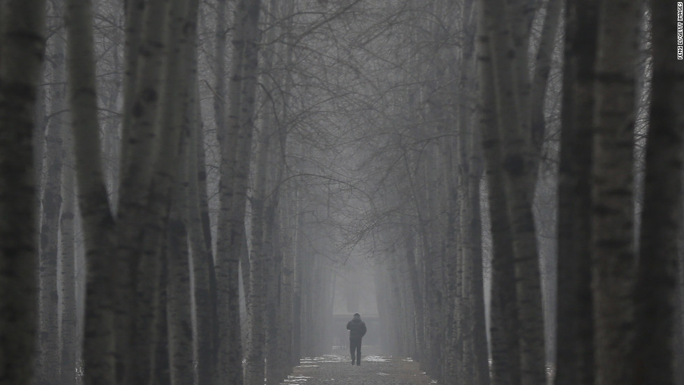 A man walks through trees on January 23.