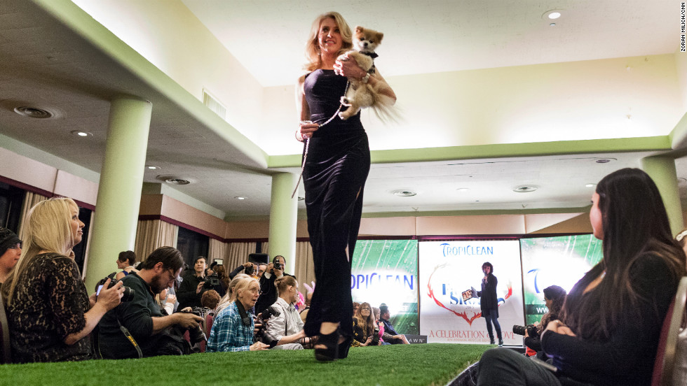 A dog and its master work the runway.