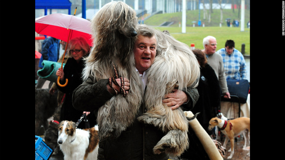 Dominico Traversri arrives with his Afghan dog Louis.
